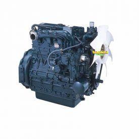 Kubota Diesel V2003