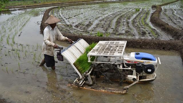 KUR 2019 Prioritas untuk Petani & Nelayan 1