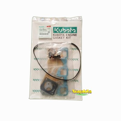 Gasket Kit D1105 3
